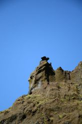 This looks like a gargoyle perched on top of the rock.