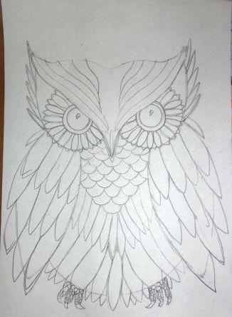 Owl pencil sketch