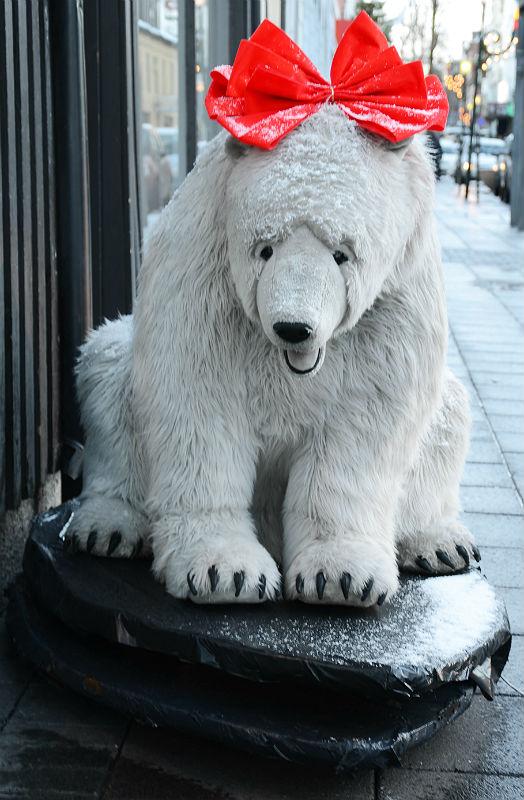 polarbearbow