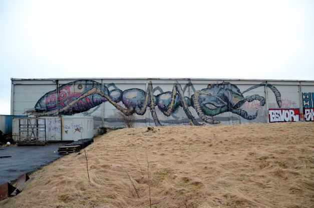 Ant graffiti-Reykjavik-2015